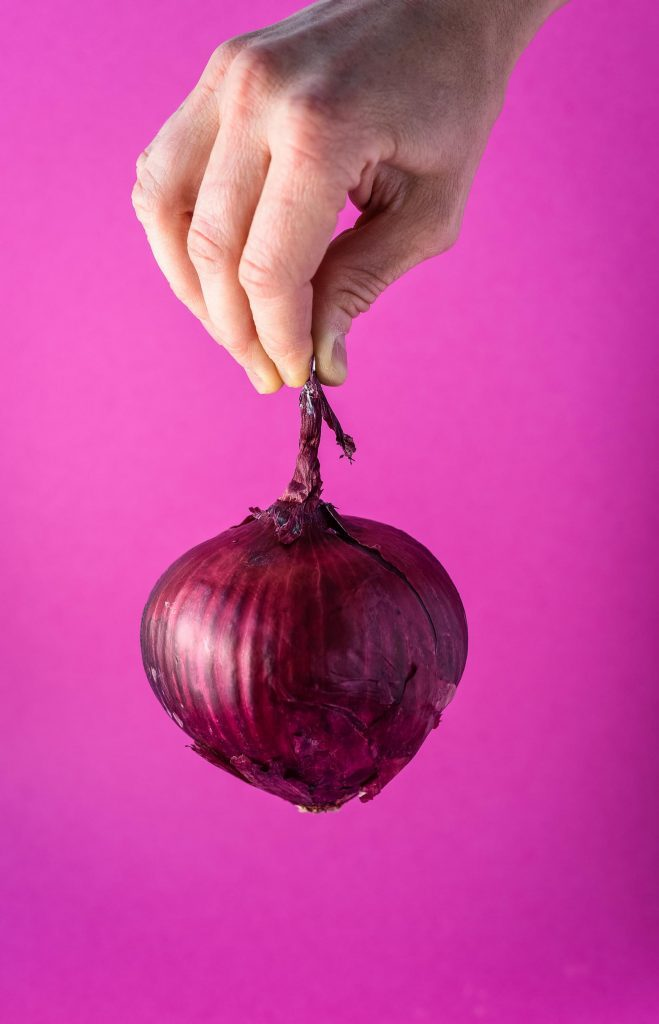 Hand holding red onion in front of pink background. Ingredients for quick pickled onions.